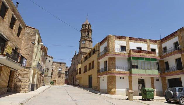 El Segarra-Garrigues sumarà 300 hectàrees més enguany
