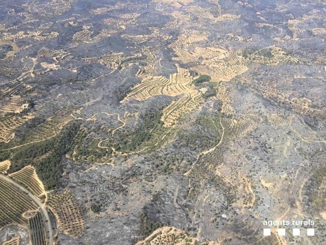 Els bombers donen per controlat l'incendi de Ribera d'Ebre