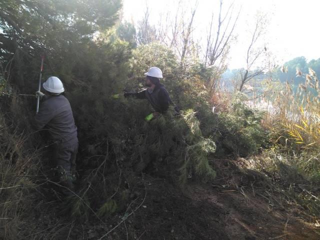 En marxa la Brigada de Neteja Forestal d'Almacelles