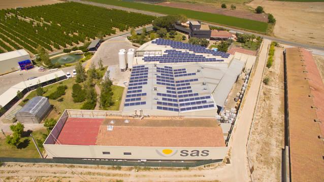 Es creen 400 llocs de treball en 10 anys a Almacelles