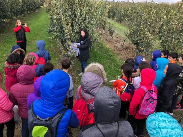 Fruiturisme arriba a l'Escola Francesc Feliu i a l'EBM Els Tabollets