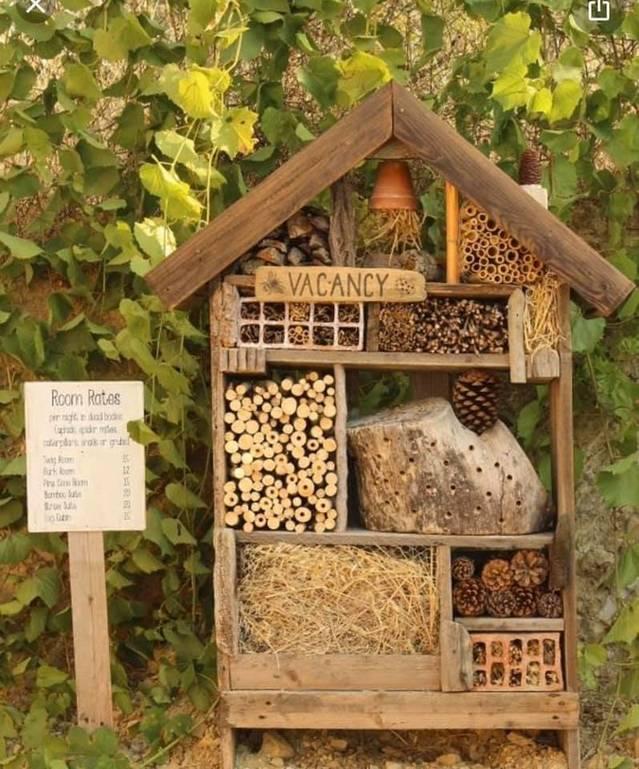 L'Ajuntament d'Almacelles instal·la cases niu per a ocells, hotels d'insectes i cases-refugi d'ànecs