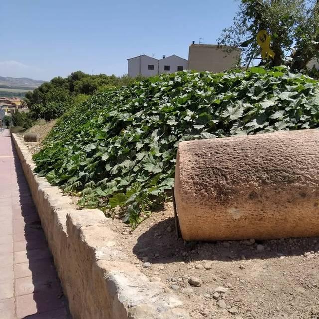 L'Ajuntament d'Almenar felicita un veí per embellir amb un jardí una entrada al poble