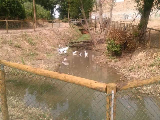 L'Ajuntament de Rosselló rehabilita el passeig de la colònia d'Al-Kanís