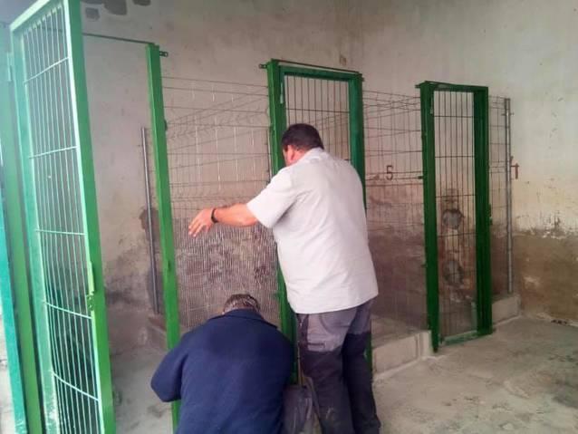 L'Ajuntament de Torres de Segre allotjarà i cuidarà temporalment els gossos i gats abandonats del poble