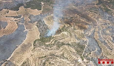 L'incendi de Ribera d'Ebre, camí d'estabilitzar-se