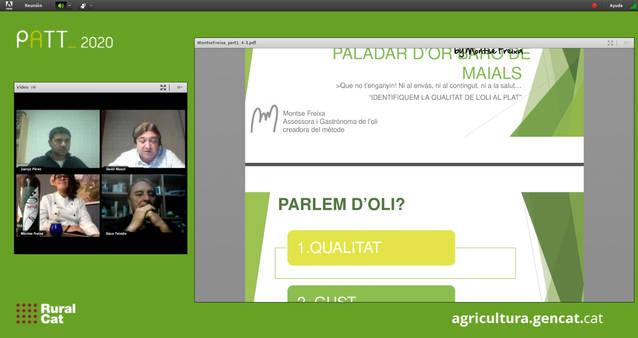 L'IRTA i la Diputació anuncien durant la Fira de l'Oli Verd la creació d'una nova parcel·la experimental a Maials, dedicada a l'olivera