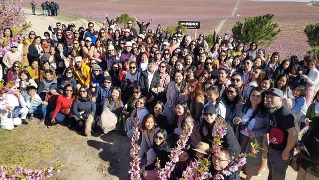 Més de 100 filipins visiten els arbres florits d'Aitona