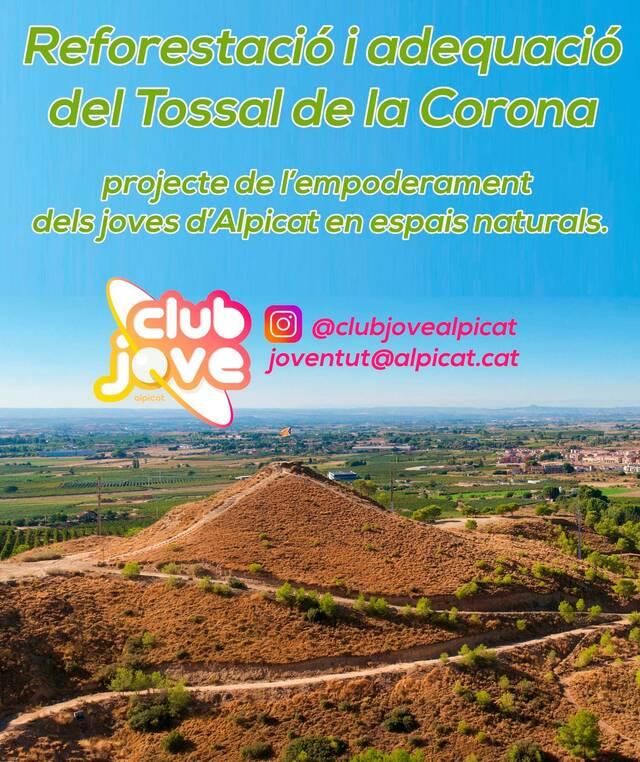 Projecte de reforestació i adequació de Tossal de la Corona adreçat als joves d'Alpicat