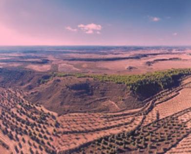Puigverd de Lleida estrena una ruta per divulgar el seu patrimoni històric i natural