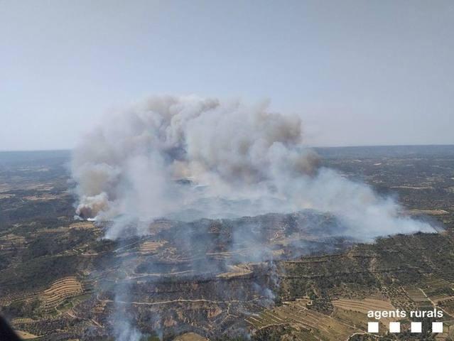 Un incendi a La Torre de l'Espanyol obliga a evacuar masies de Maials i Llardecans