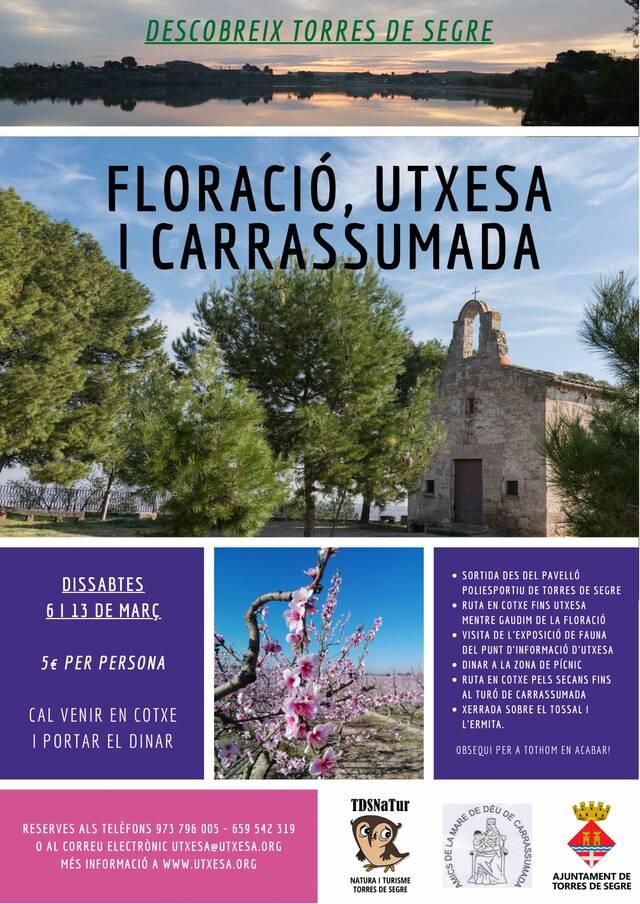 Visites guiades a Torres de Segre per gaudir de la floració dels fruiters
