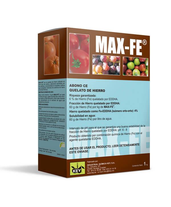 MAX-Fe