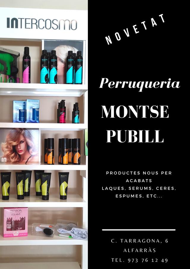 PERRUQUERIA MONTSE PUBILL