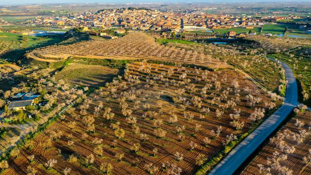 Ajuts a les explotacions agràries afectades pels aiguats de l'octubre de 2019