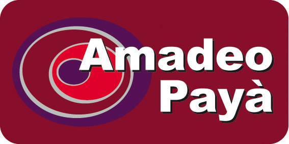 AMADEO PAYA SOGORB SL