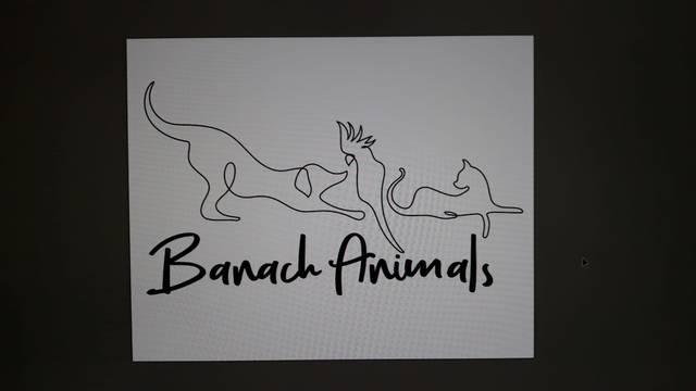 BANACH ANIMALS