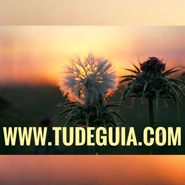 TUDEGUIA
