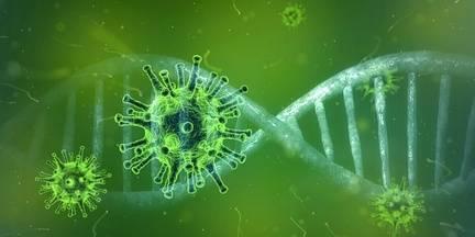 A la recerca de nous fàrmacs específics contra la COVID-19