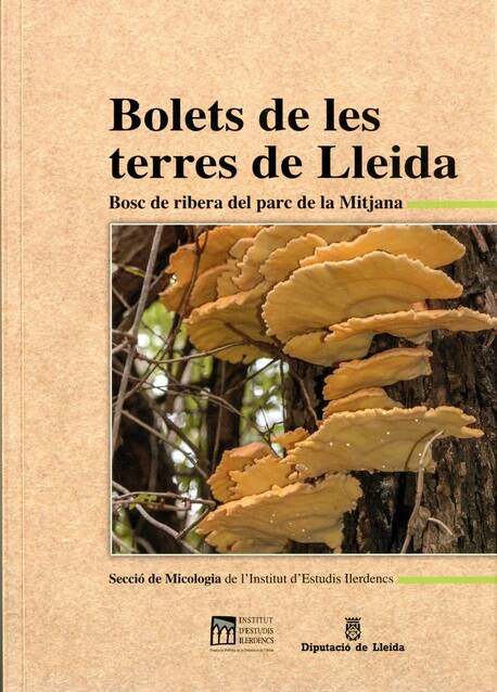 Bolets de les terres de Lleida. Bosc de ribera del parc de la Mitjana