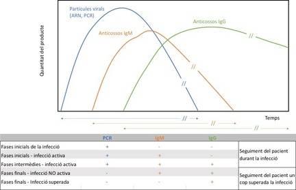 Diagnòstic de la COVID-19: per a què serveixen els diferents tipus de tests