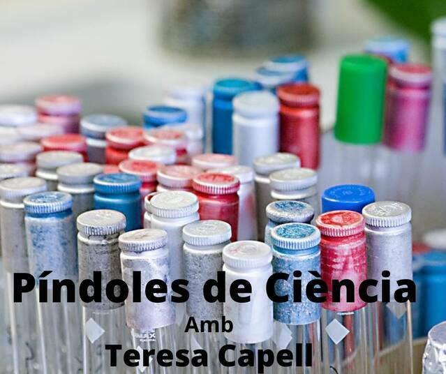 Teresa Capell - Enginyeria genètica - La ciència, quí la fa?